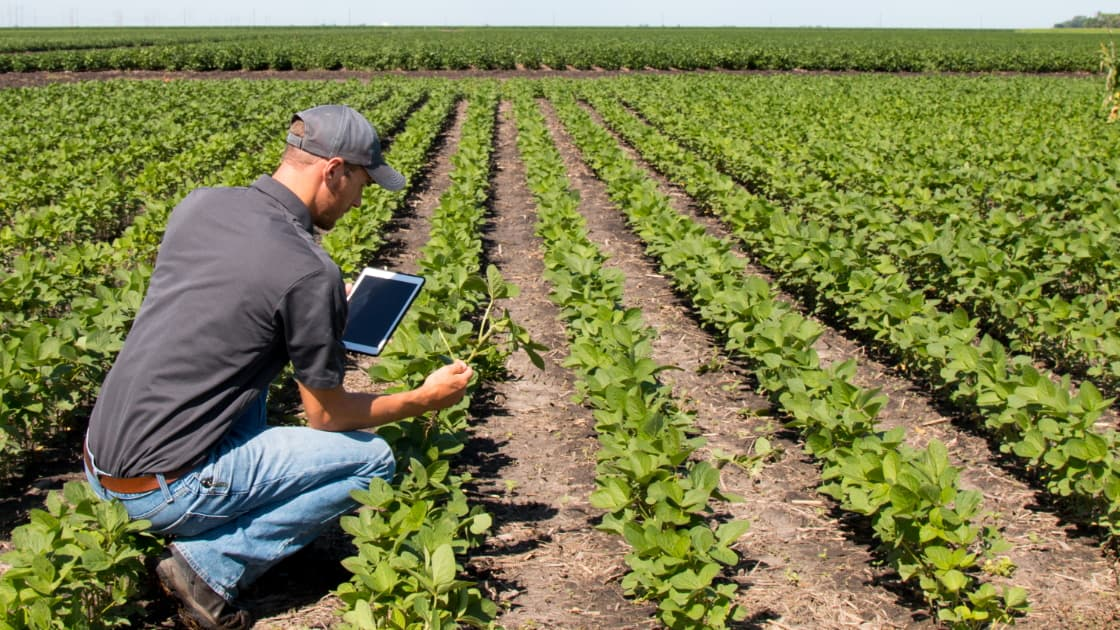 """Featured image for """"Agritech Workshops in April"""""""